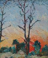 Bäume im Sonnenrot
